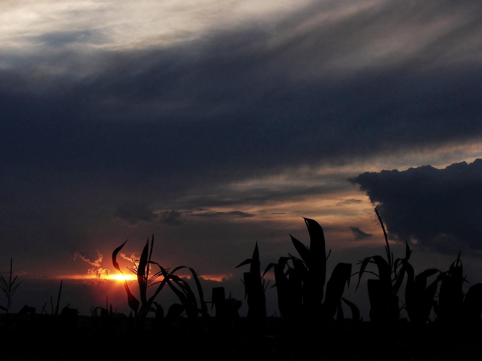 Залез над Дуранкулак - последният оазис на дивата природа.