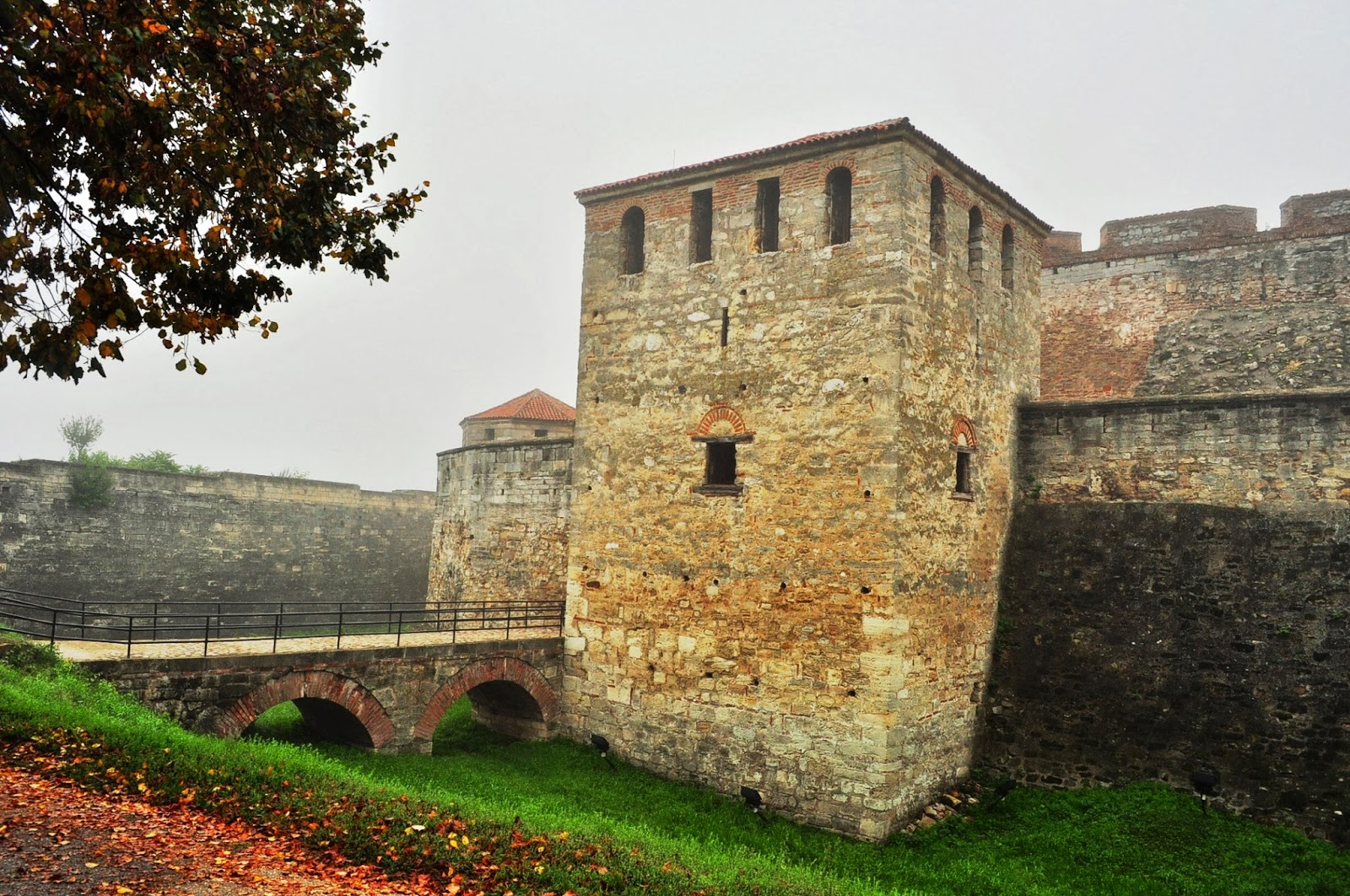 На следващата сутрин, сме неприятно изненадани от непрогледната мъгла, обичайна за тази част на България по това време на годината. В крайдунавския град Видин обаче ниската облачност плахо се разкъсва, за да разкрие пред очарованите ни погледи масивния силует на средновековната крепост Баба Вида. Основите й са били поставени още през 10-ти век.