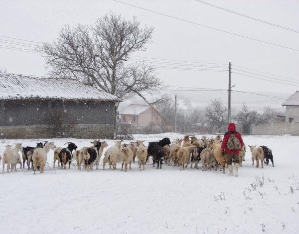 Един зимен уикенд в село Кюлевча