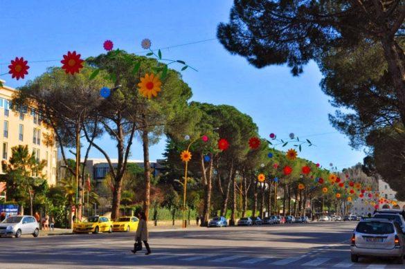 Движението в Тирана е скромно, а тези цветчета са толкова сладки....