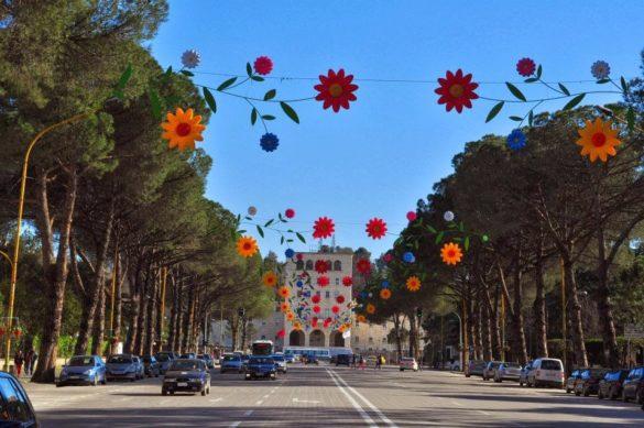 Не, не е детски празник! Просто целият център е с тези пъстри пластмасови цветя. Енвер Ходжа много е настоявал всичко да е пъстро и весело. Трогателни са, нищо че са ...кич  /или може би точно затова!/
