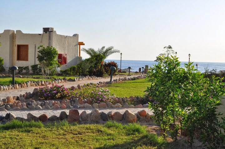 Хургада  - последна спирка на нашето 8-дневно пътешествие в Египет. Приятен курорт, който може да е навсякъде другаде.