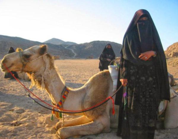 Ще умре и друга камила