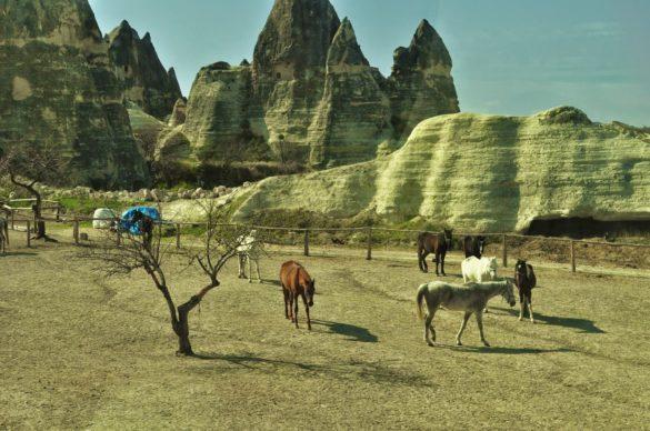 """От прозореца на автобуса се сбогувам със """"Страната на красивите коне"""" и си обещавам, че все някога отново ще се завърна тук, за да се будя сутрин в пет от електрония глас на имама, да гоня реещи се в небето балони и да се гмуркам до насита в дълбините на безбрежното скално море на Анадола."""