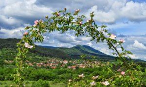 Долина с дъх на рози