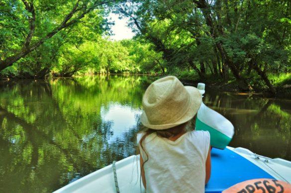 """В района на Приморско се предлагат разходки с лодки, които отвеждат във вътрешността на резервата """"Ропотамо"""" -дом на безброй редки и застрашени в световен мащаб растителни и животински видове"""