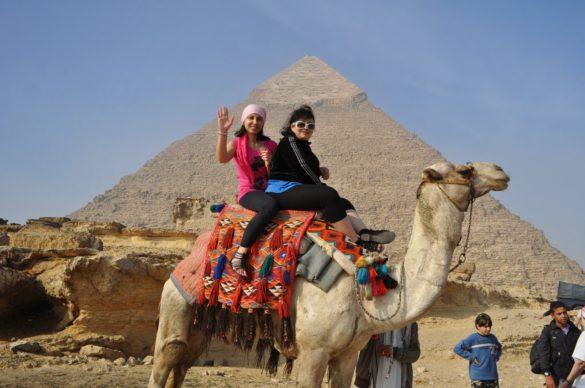 Твърде кротки  бяха тез камили, сториха ми се отпаднали и безразлични. Май бяха упоени с някакво психотропно вещество
