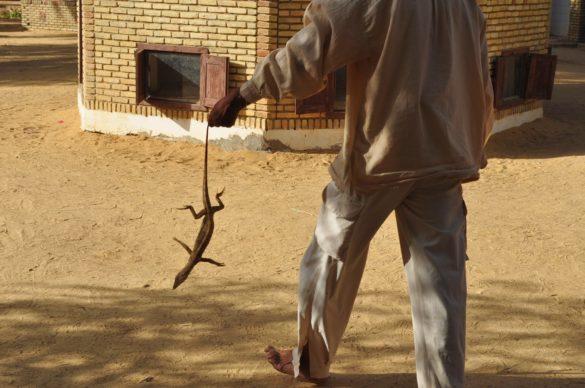 Един отровен гущер разбуни духовете в туристическата ни група