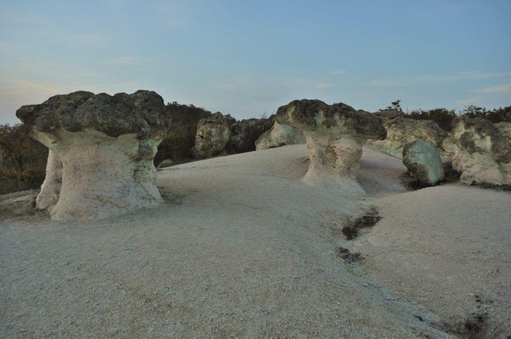 Каменните гъби 33