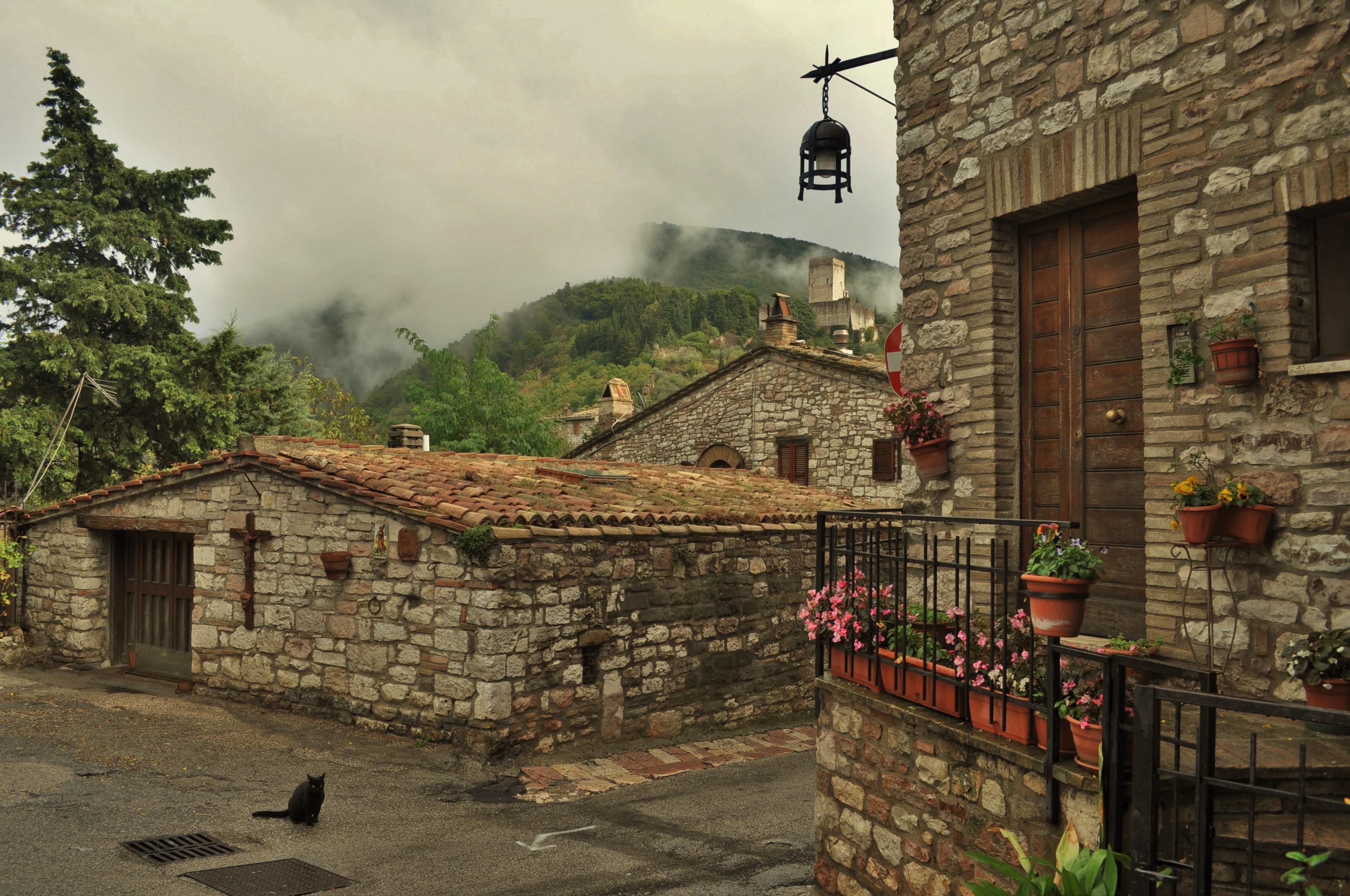 На пръв поглед Асизи не се отличаваше особено от останалите китни населени места, накацали по хълмовете на италианската провинция и увенчани с неотментата крепост или замък.