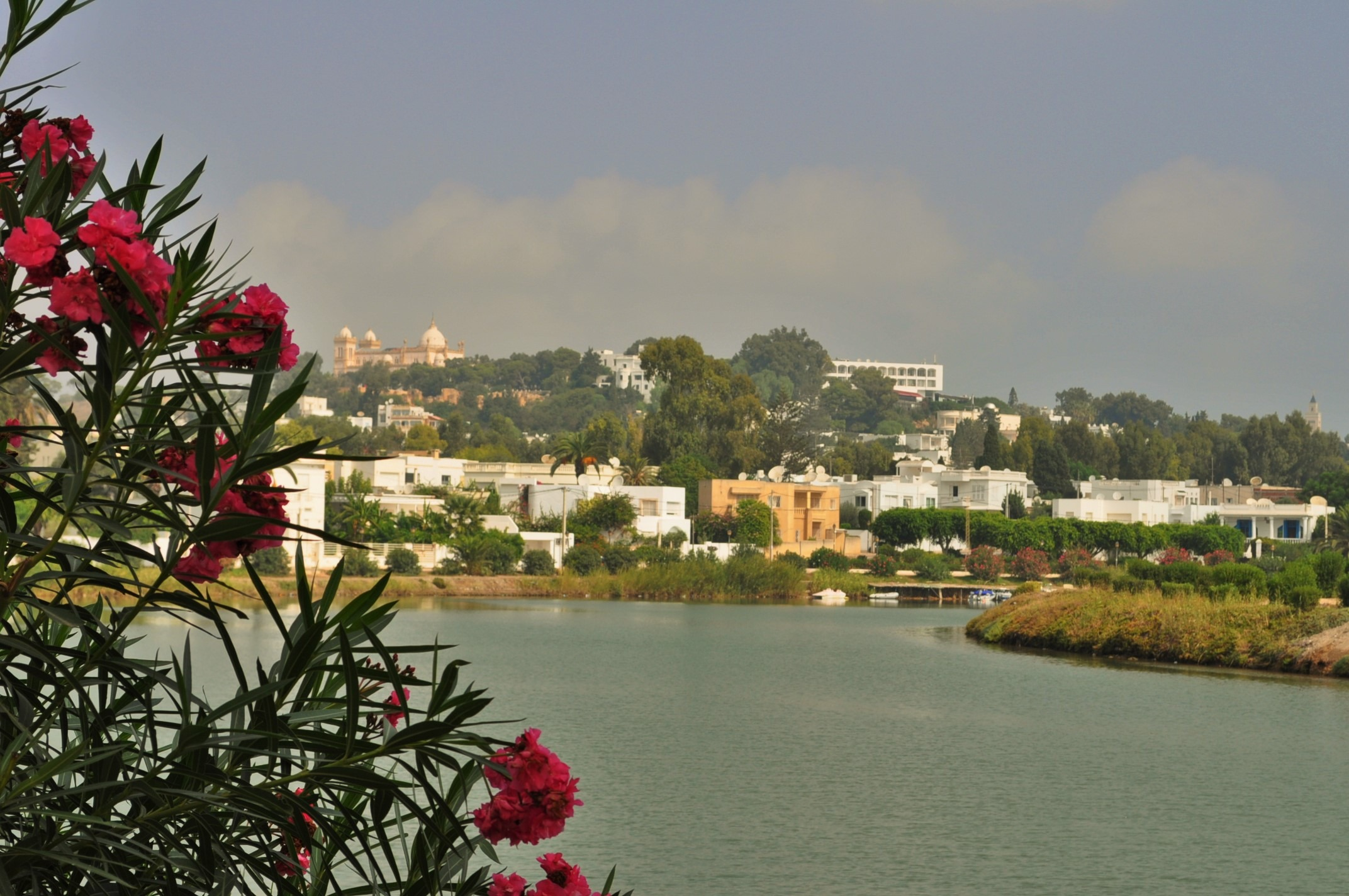 Заведоха ни в покрайнините на град Тунис/столицата на Тунис/, за да ни покажат останките от  легендарния Картаген- градът на славните финикийци, кръстосвали надлъж и шир морета и паланки.