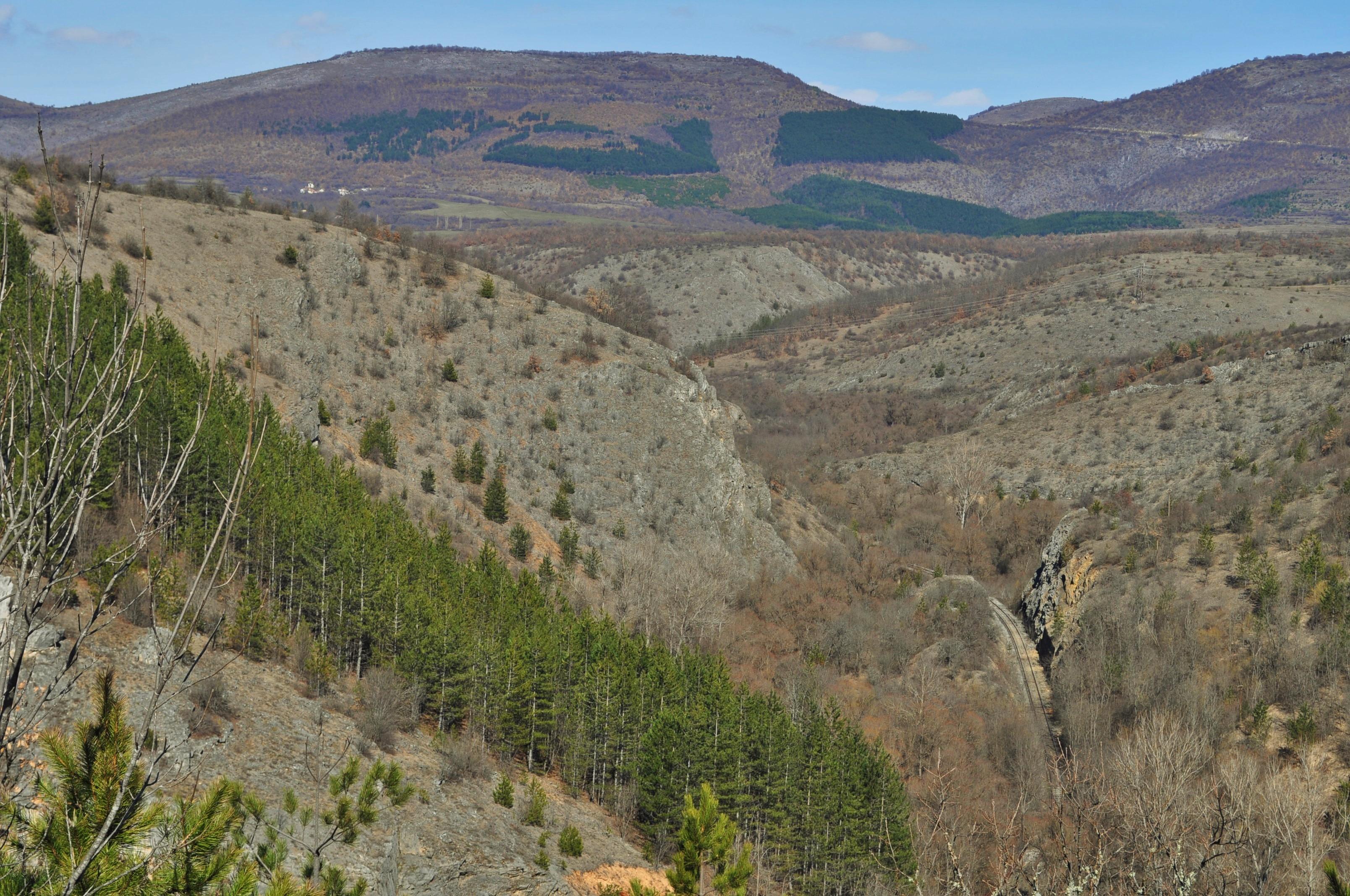 Мястото е радост за сетивата. Окото се рее свободно над заоблените била на Стара планина, в чийто нозе си провира път реката, забързана към съседна Сърбия.
