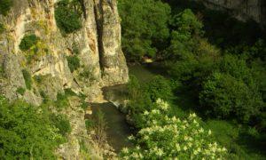Еменския каньон – да потънеш в зелената прегръдка на Балкана