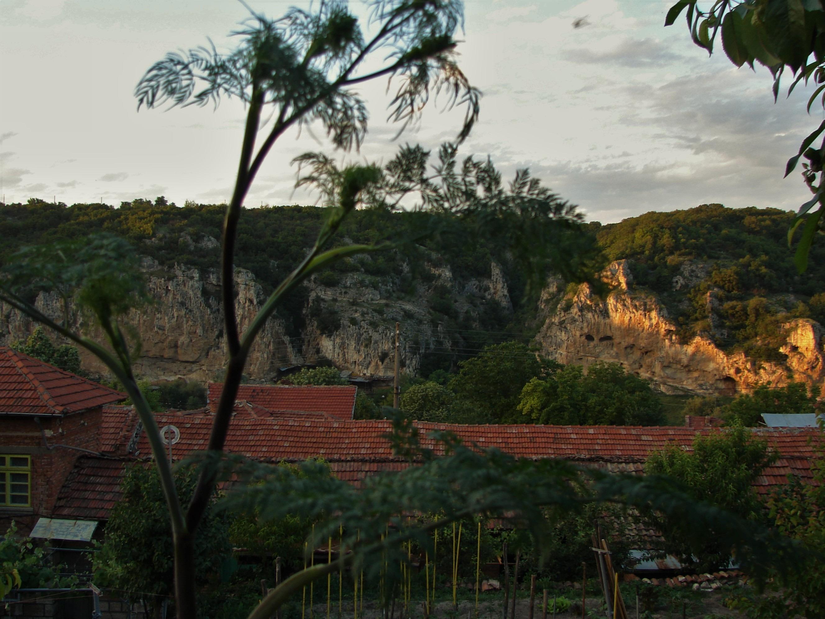 Село Кошов се е сгушило в подножието на скални образувания, обитавани от черни щъркели, египетски лешояди, както и гласовити представители на малкия креслив орел