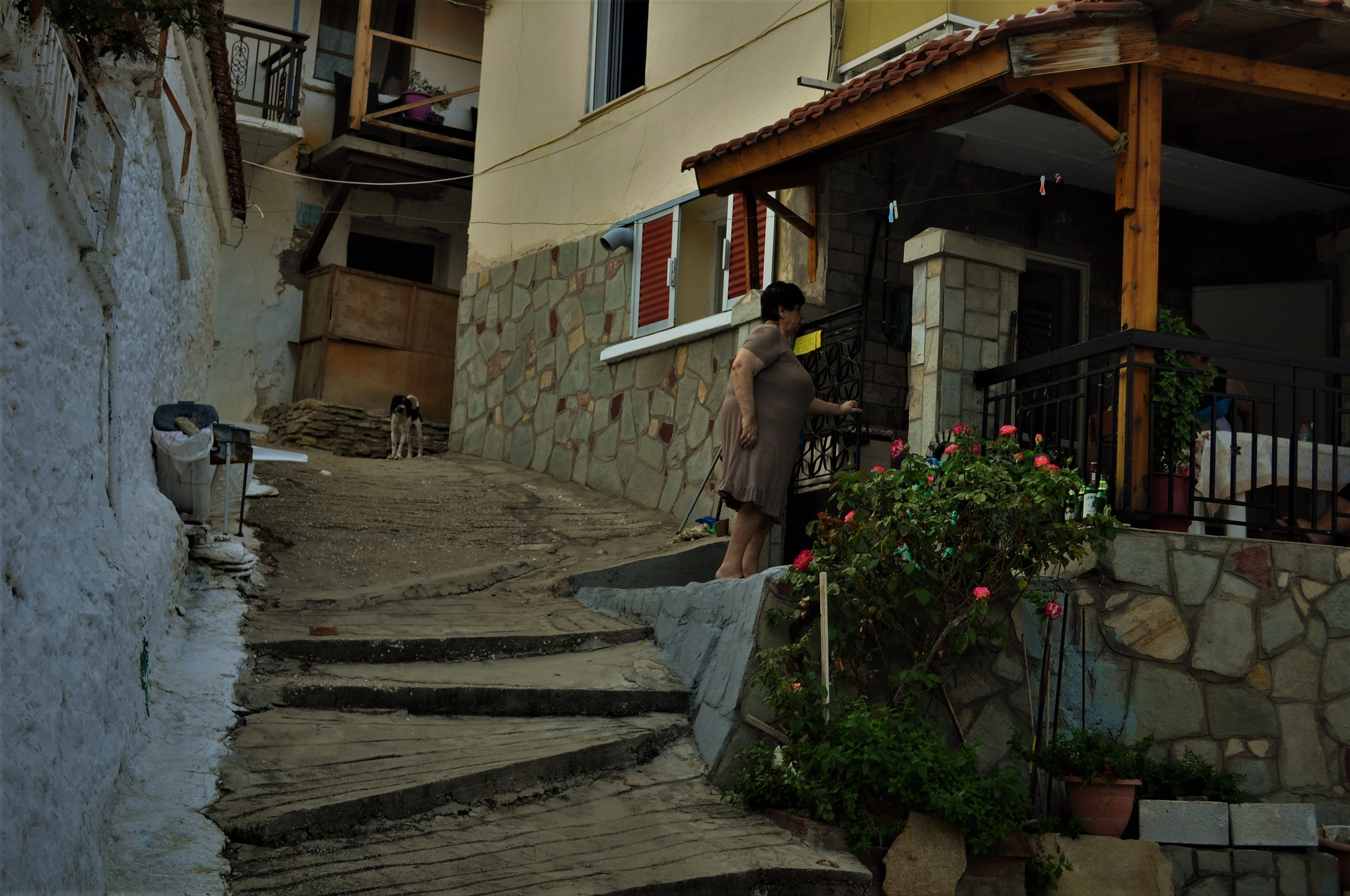 А Мариес е  едно от най-старите села на о-в Тасос, основано през Византийската епоха.