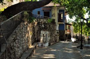 Сотирос има 24 постоянни жители, но през лятото тук става малко по-оживено, особено в селската таверна, която е сърцето и душата на селото.