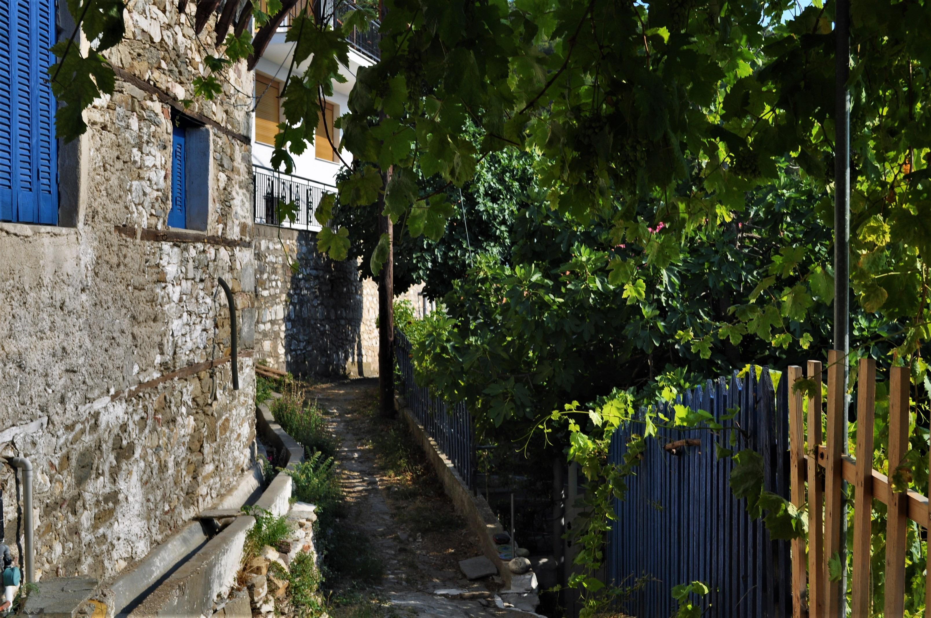 Лете тасовци слизат долу на брега, за да посрещат туристи в своите студиа и малки едноетажни хотелчета, пък и за да наглеждат маслинените си плантации.