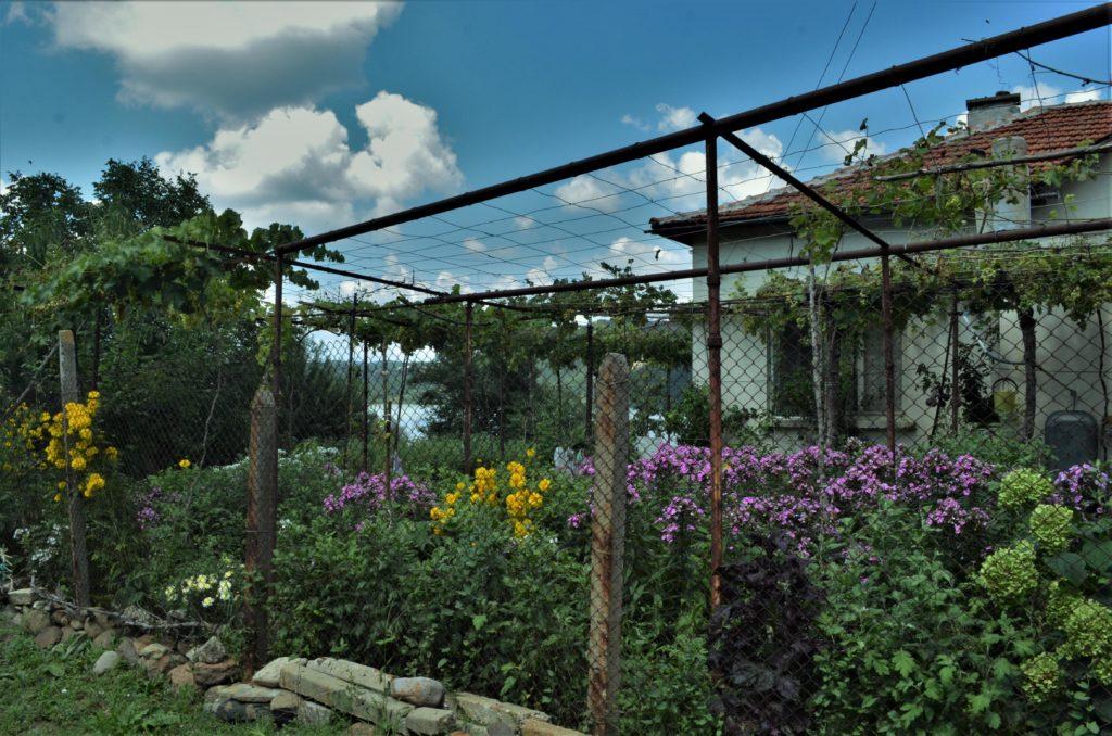 село Лисиците градина
