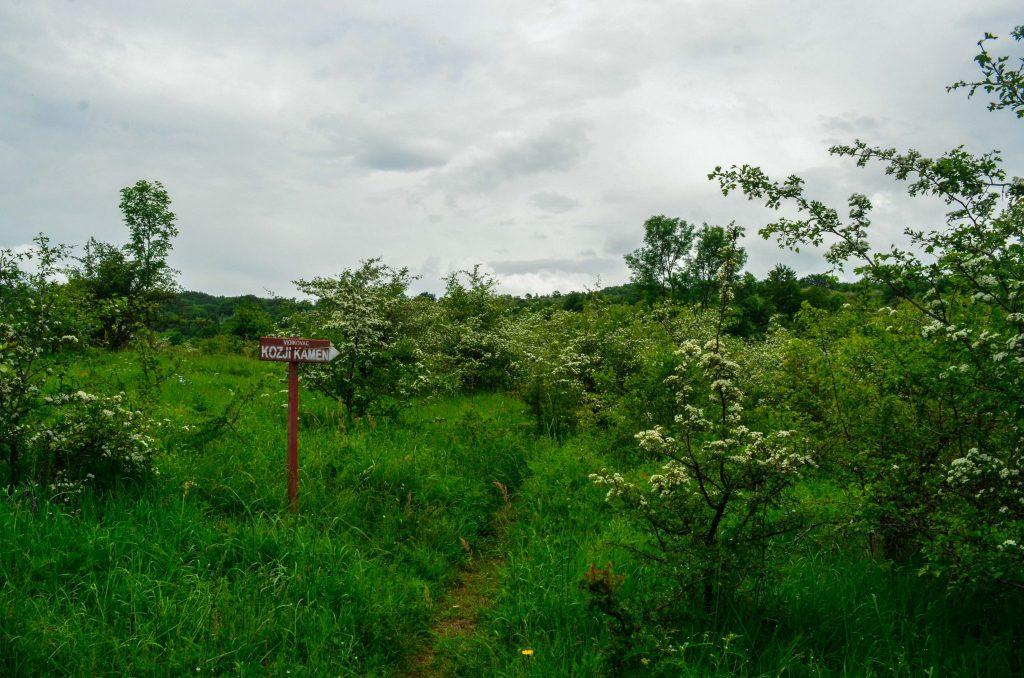 Пирот - пътека към Козият камък