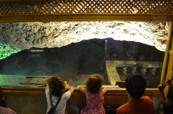 Деца надничат към пещерата през витрината, докато неканена гостенка щрака нахално с фотоапарата..