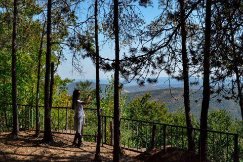 Паркът е осеян с вековни иглолистни и букови гори