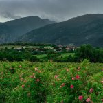 Розовата долина маршрути