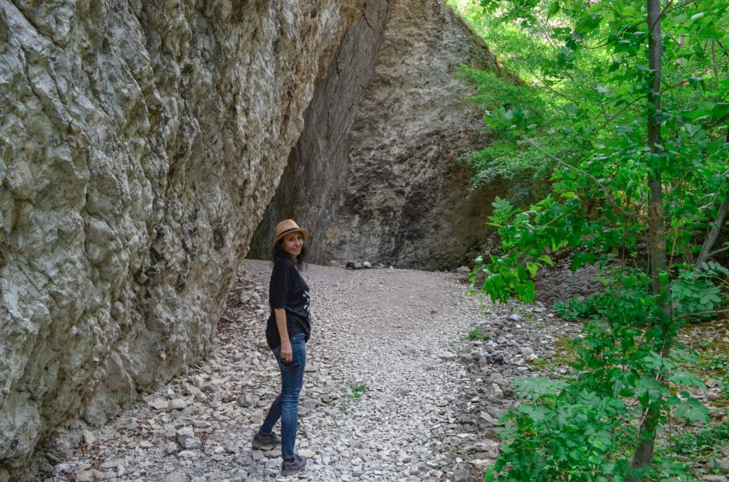 Пропадалото край Реселец скали