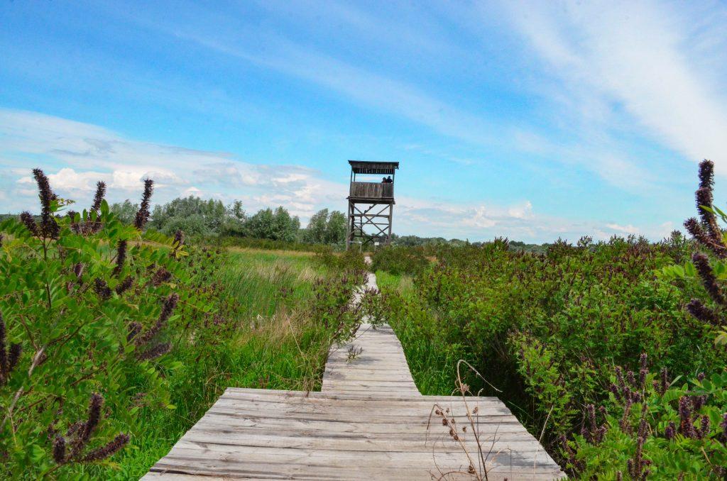 Белене природен парк Персина